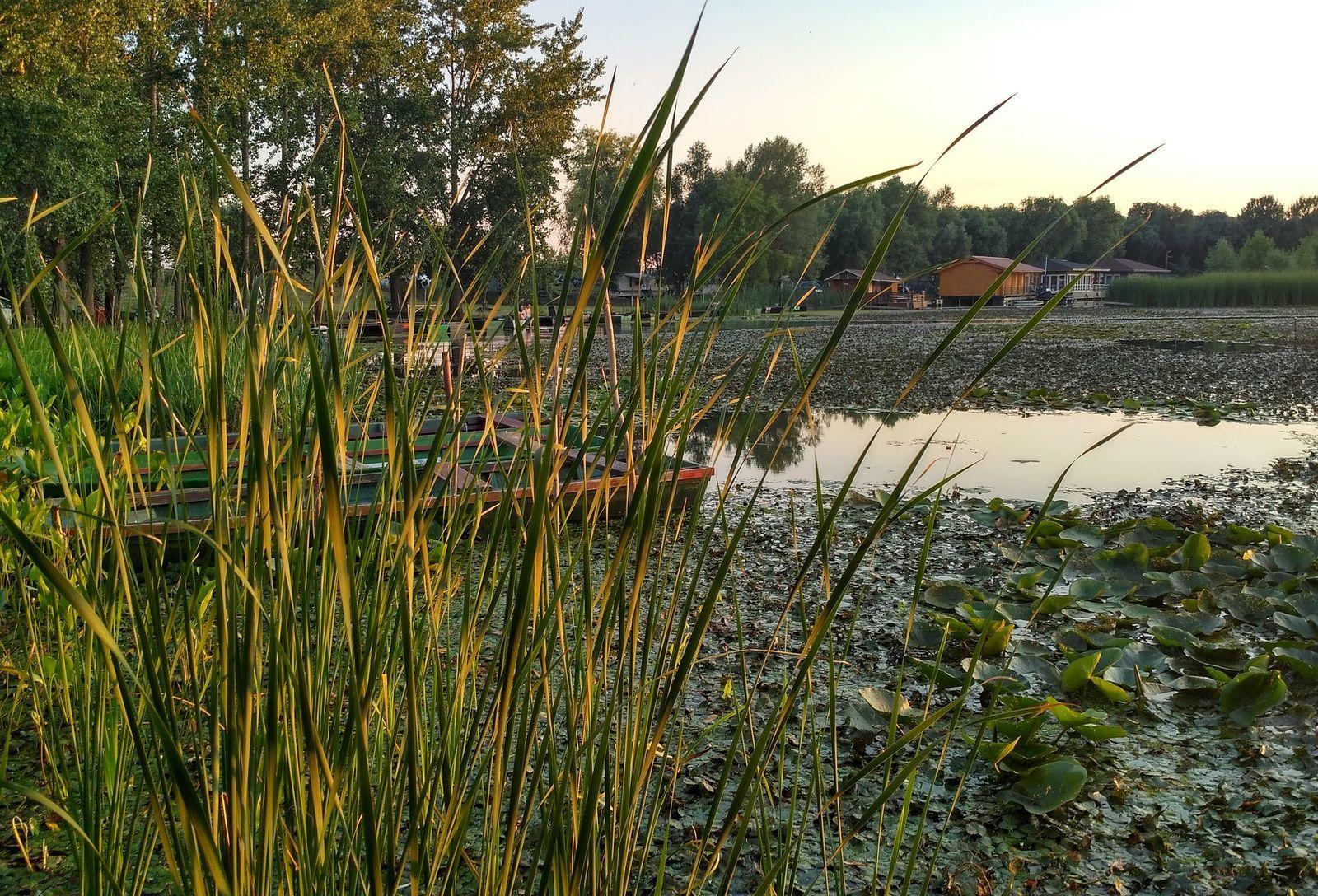 60cacb8f73 A biztonságos üzemeltetés és az árvízvédelem miatt csökkenti a Tisza-tó  szintjét az üzemeltető Közép-Tisza-vidéki Vízügyi Igazgatóság (Kötivizig).