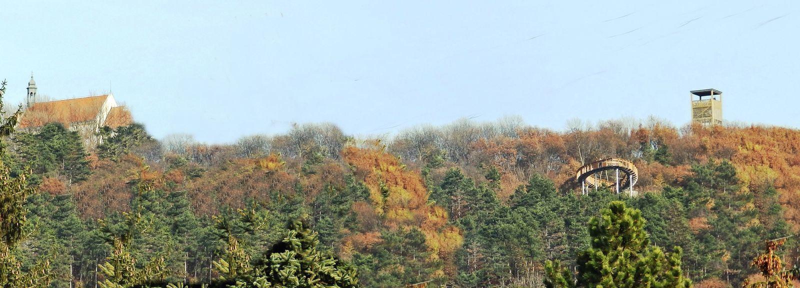 A Kisalföldi Erdőgazdaság Zrt. f45441a8db