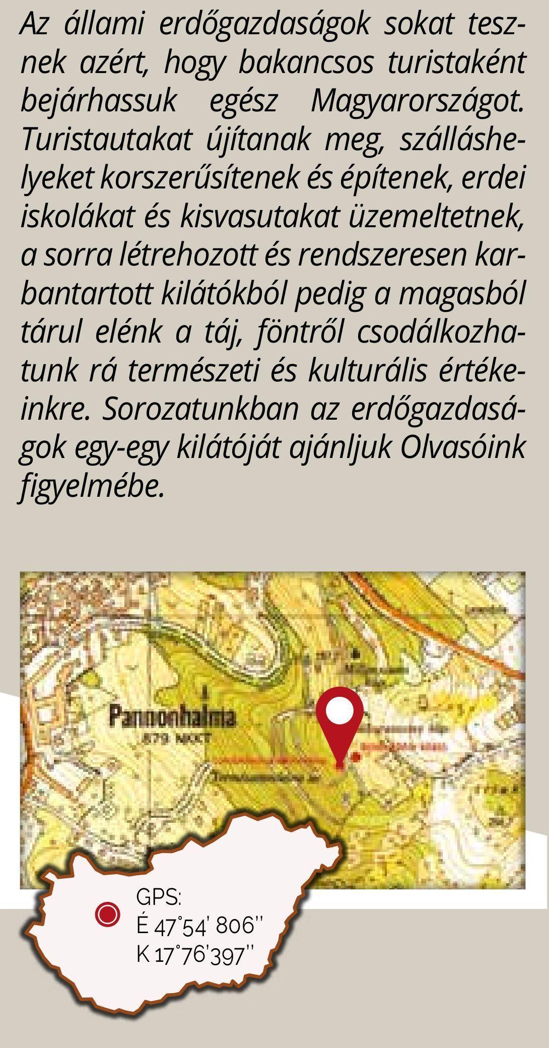 saját kivitelezésében elkészült Lombkorona tanösvénye olyan hihetetlenül  népszerű kirándulóhely lett 450da958b8
