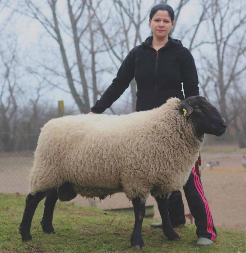 egyedülálló nők mezőgazdaságban)