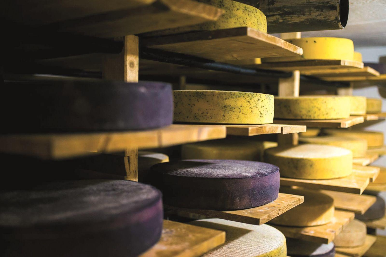 Az érlelt sajt értékesítése kevésbé függ a piaci kereslet ingadozásától