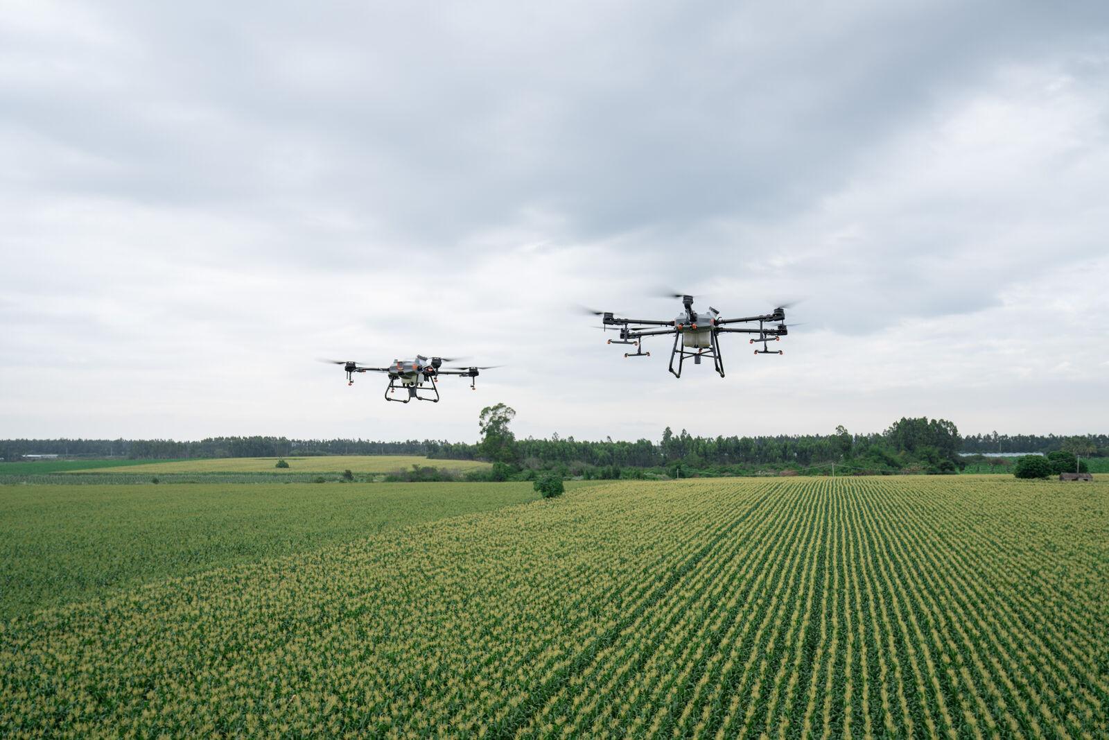 A drónok használata a permetezésben akár 90 százalékos víz- és 50 százalékos növényvédőszer-megtakarítást eredményezhet