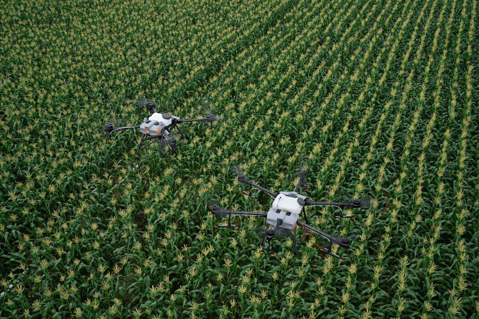 Egyedüli forgalmazóként foglalkoznak a mechanikus és hidraulikus permetező drónokkal is. Mind az öt nagy gyártót képviselik