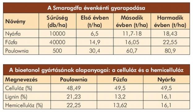 Császárfa fűtőértéke